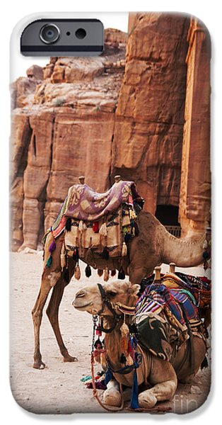 Jordan Pyrography iPhone Cases - Camels iPhone Case by Jelena Jovanovic