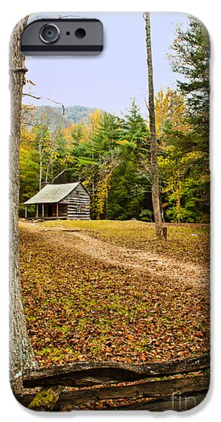 Carter iPhone Cases - Carter Shields Cabin iPhone Case by Lena Auxier