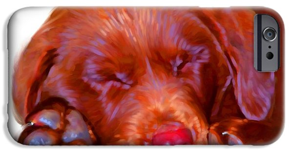 Cute Puppy Pictures Digital Art iPhone Cases - Chocolate Labrador Puppy iPhone Case by Iain McDonald