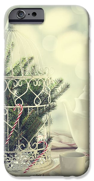 Bird Cage iPhone Cases - Christmas Birdcage iPhone Case by Amanda And Christopher Elwell