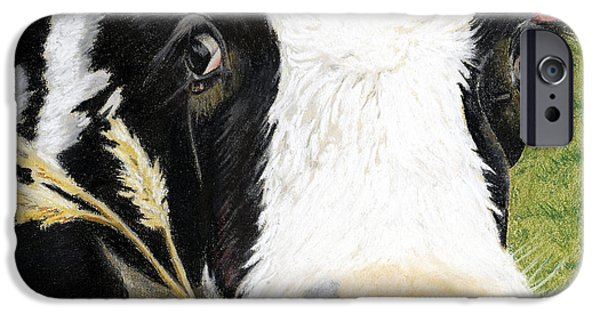 Bulls Pastels iPhone Cases - Cow No. 0652 iPhone Case by Carol McCarty