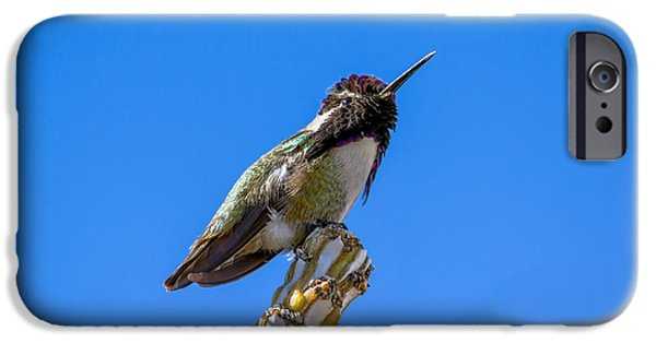 Haybale iPhone Cases - Cute Hummer iPhone Case by Robert Bales