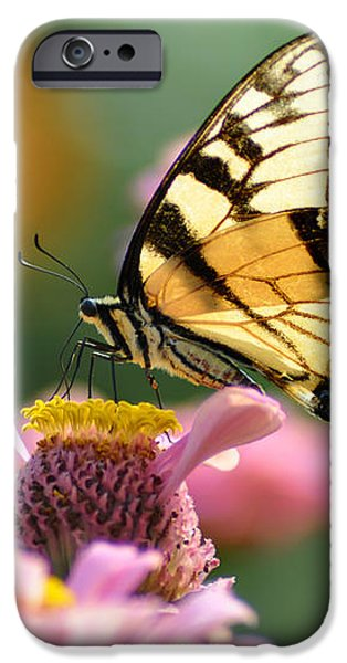 Delicate Wings iPhone Case by Bill Cannon