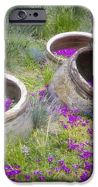 Desert Flowers iPhone Case by Joan Carroll