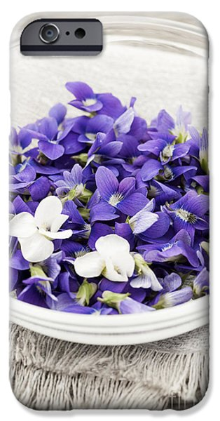 Violet Photographs iPhone Cases - Edible violets in bowl iPhone Case by Elena Elisseeva