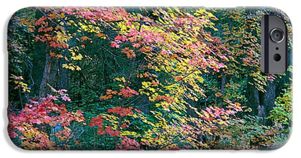 July iPhone Cases - Fall Colors At Fourth Of July Canyon iPhone Case by Panoramic Images