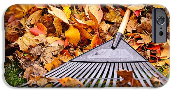 Work Tool iPhone Cases - Fall leaves with rake iPhone Case by Elena Elisseeva