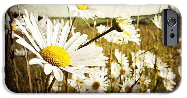 Floral Photographs iPhone Cases - Field of flowers iPhone Case by Les Cunliffe