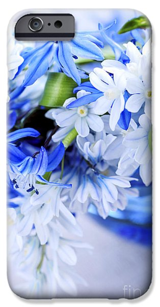 Blossom iPhone Cases - First spring flowers iPhone Case by Elena Elisseeva