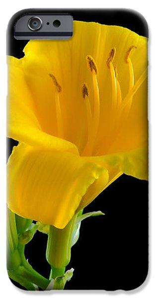 Flower Portrait iPhone Case by Yasar Ugurlu