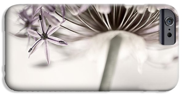 Alliums iPhone Cases - Flowering onion flower iPhone Case by Elena Elisseeva