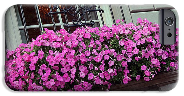 Cora Wandel iPhone Cases - Flowers Beneath A Windowsill iPhone Case by Cora Wandel