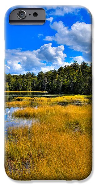 Fly Pond in the Adirondacks iPhone Case by David Patterson