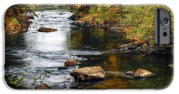Creek iPhone Cases - Forest river in the fall iPhone Case by Elena Elisseeva