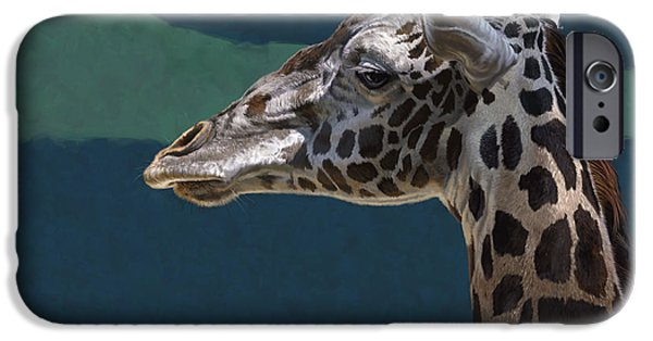 Giraffes iPhone Cases - Giraffe iPhone Case by Aaron Blaise