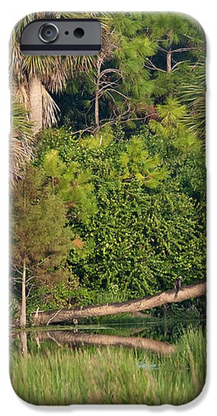 Green Cay Wetlands, Fl iPhone Case by Mark Newman