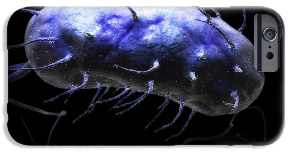 Pathogenic iPhone Cases - Helicobacter Pylori iPhone Case by Science Picture Co