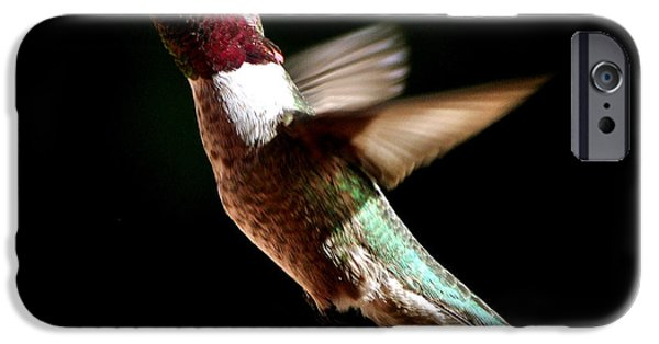 Redish iPhone Cases - Hummingbird Male Anna iPhone Case by Jay Milo