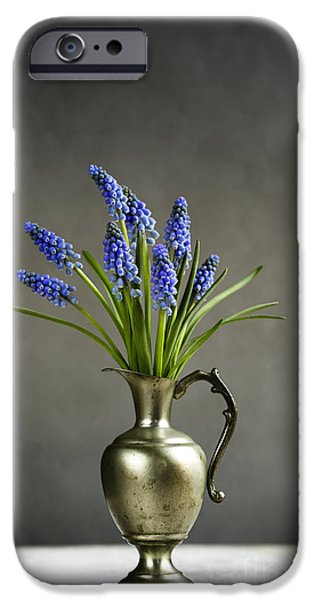Grape iPhone Cases - Hyacinth Still Life iPhone Case by Nailia Schwarz