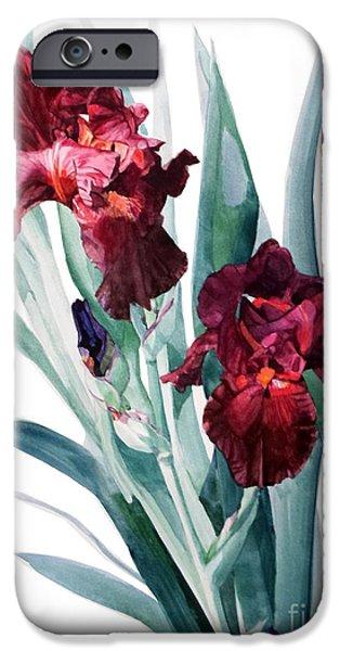 Botanic Illustration iPhone Cases - Iris Donatello iPhone Case by Greta Corens
