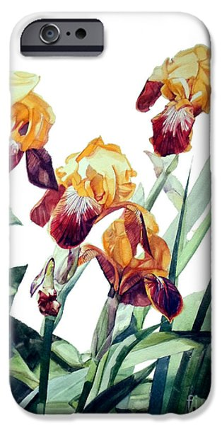 Botanic Illustration iPhone Cases - Iris La Vergine degli Angeli Verdi iPhone Case by Greta Corens