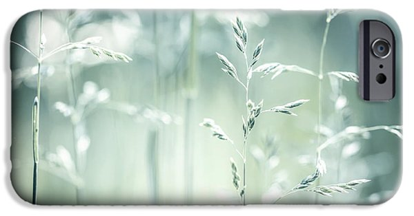 Meadow Photographs iPhone Cases - June green grass flowering iPhone Case by Elena Elisseeva