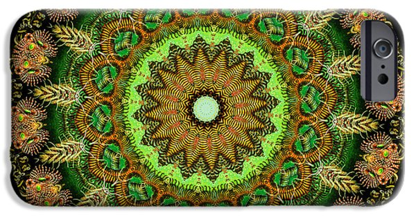 Haeckel iPhone Cases - Kaleidoscope Ernst Haeckl Sea Life Series iPhone Case by Amy Cicconi