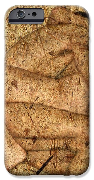Kuma Sutra iPhone Case by Kurt Van Wagner
