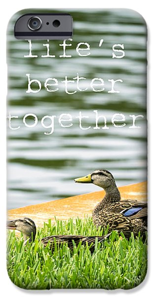 Everglades iPhone Cases - Lifes better together iPhone Case by Edward Fielding