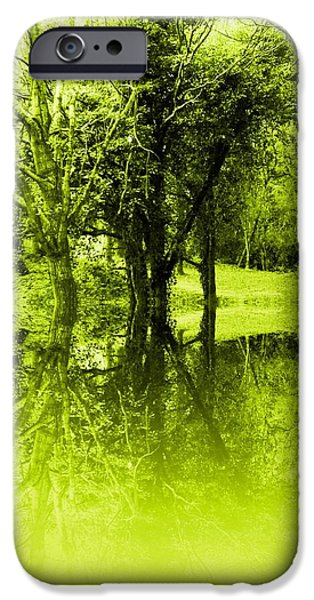 Reflecting Trees iPhone Cases - Lime Trees iPhone Case by Sharon Lisa Clarke
