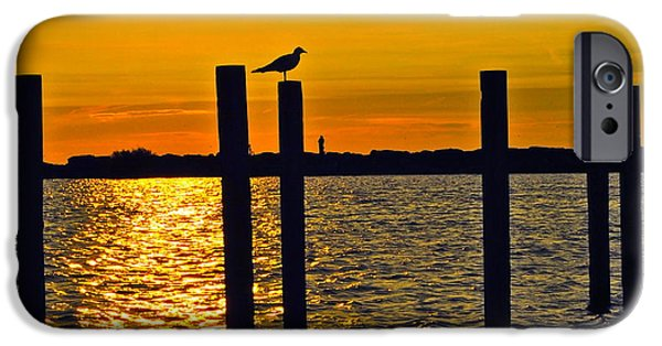 Flying Seagull iPhone Cases - Lone Gull iPhone Case by Frozen in Time Fine Art Photography