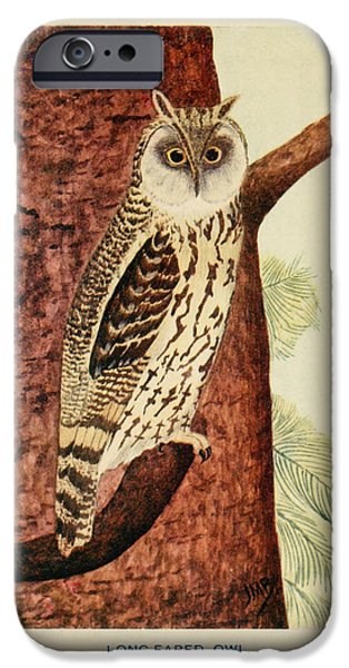Business Drawings iPhone Cases - Long Eared Owl iPhone Case by John James Audubon