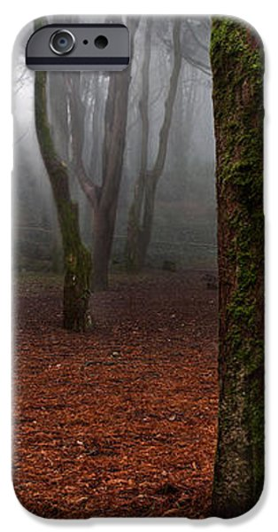 Magic light iPhone Case by Jorge Maia