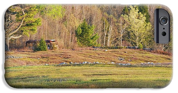 New England Landscape iPhone Cases - Maine Blueberry Field In Spring iPhone Case by Keith Webber Jr