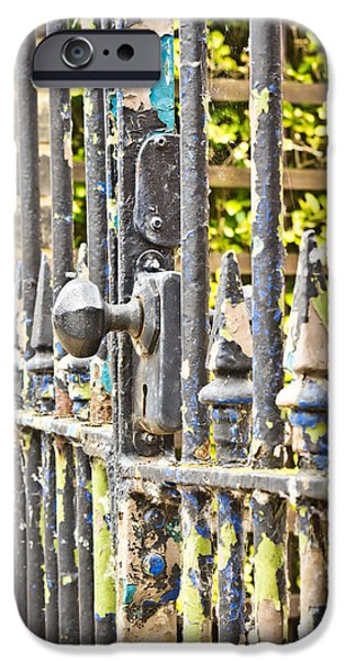 Antique Ironwork iPhone Cases - Old gate iPhone Case by Tom Gowanlock