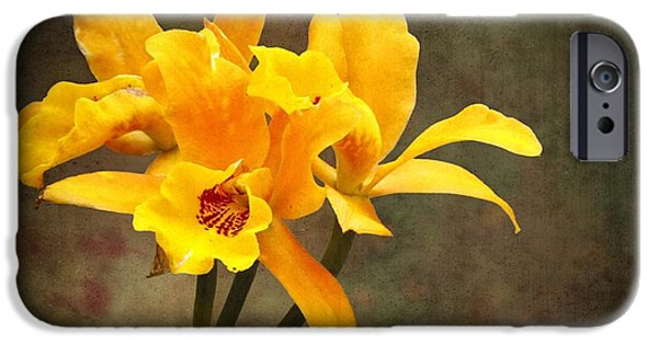 Cattleya iPhone Cases - Orange Spotted Lip Cattleya orchid iPhone Case by Rudy Umans