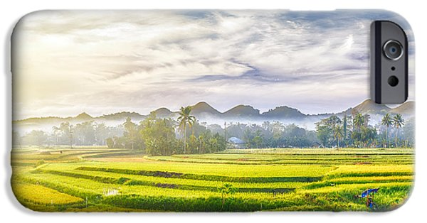 Best Sellers -  - Agricultural iPhone Cases - Paddy rice panorama iPhone Case by MotHaiBaPhoto Prints