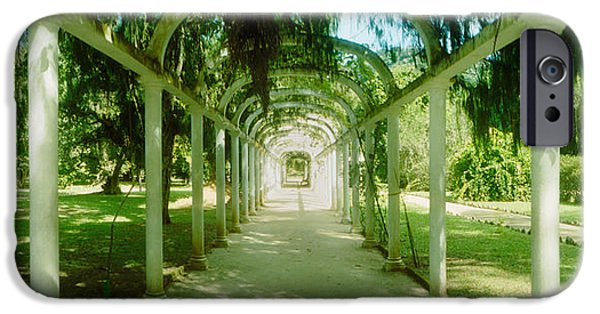 Botanical Photographs iPhone Cases - Pathway In A Botanical Garden, Jardim iPhone Case by Panoramic Images