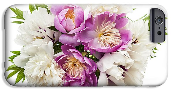 Cutout Photographs iPhone Cases - Peony flower bouquet  iPhone Case by Elena Elisseeva