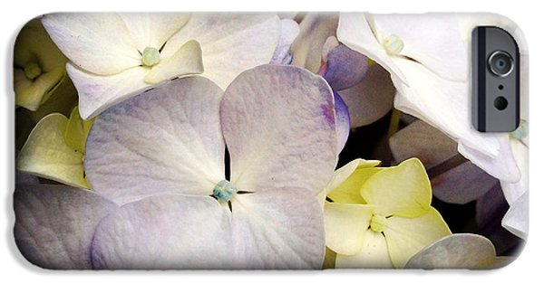 Nature Abstracts iPhone Cases - Petals iPhone Case by Les Cunliffe