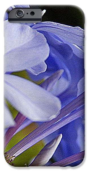 Plumbago Summer Solstice In New Orleans Louisiana iPhone Case by Michael Hoard