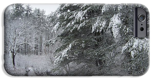 New England Snow Scene iPhone Cases - Powdered Sugar iPhone Case by Eunice Miller