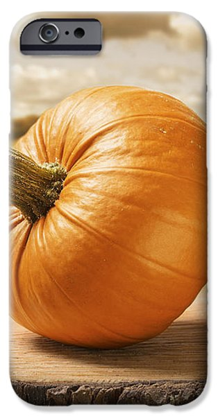 Pumpkins iPhone Case by Amanda And Christopher Elwell