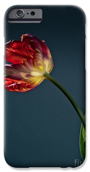 Blossom iPhone Cases - Red Tulip iPhone Case by Nailia Schwarz