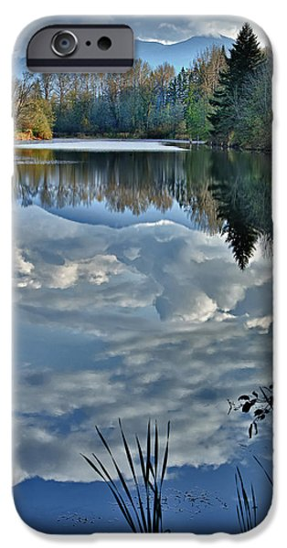 Reflections Of Nature iPhone Cases - Reflections of Autumn iPhone Case by Mary Jo Allen