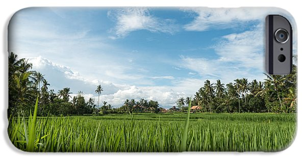 Agricultural iPhone Cases - Rice fields in Ubud iPhone Case by Nikita Buida
