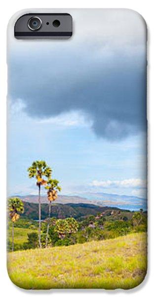 Rinca panorama iPhone Case by MotHaiBaPhoto Prints