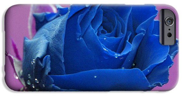 Recently Sold -  - Nature Abstract iPhone Cases - Rose iPhone Case by Carol Lynch