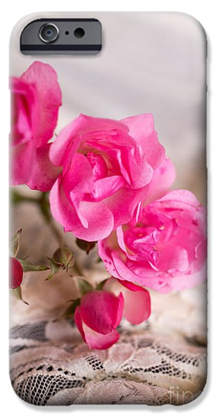 Rose iPhone Cases - Roses and Lace iPhone Case by Edward Fielding