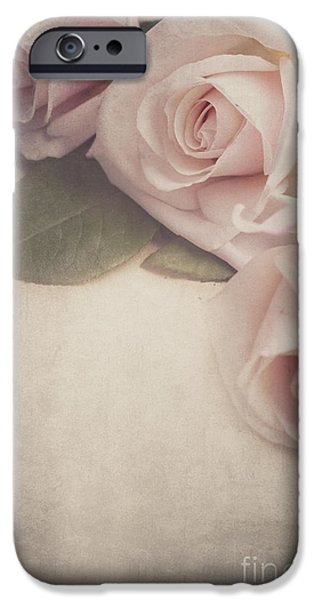 Rose iPhone Cases - Roses iPhone Case by Jelena Jovanovic